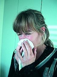 3 Heuschnupfen Allergie