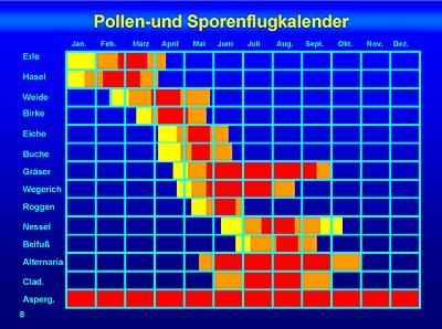 4 Pollenflugkalender