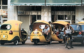 Cocotaxis_in_Hawanna